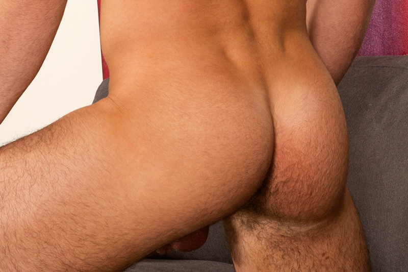 SeanCody-beautiful-young-muscle-dude-Dominic-smooth-huge-pecs-nipples-cock-trimmed-pubic-bush-hairy-butt-cheeks-straight-man-hole-012-tube-download-torrent-gallery-photo