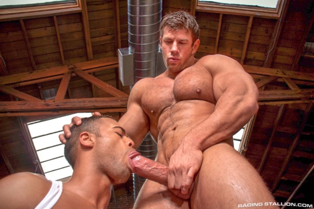 ... gay-video-on-demand-gay-vod-premium-gay-sites-01-pics-gallery-tube: nudedudesexpics.com/author/superuser/page/75