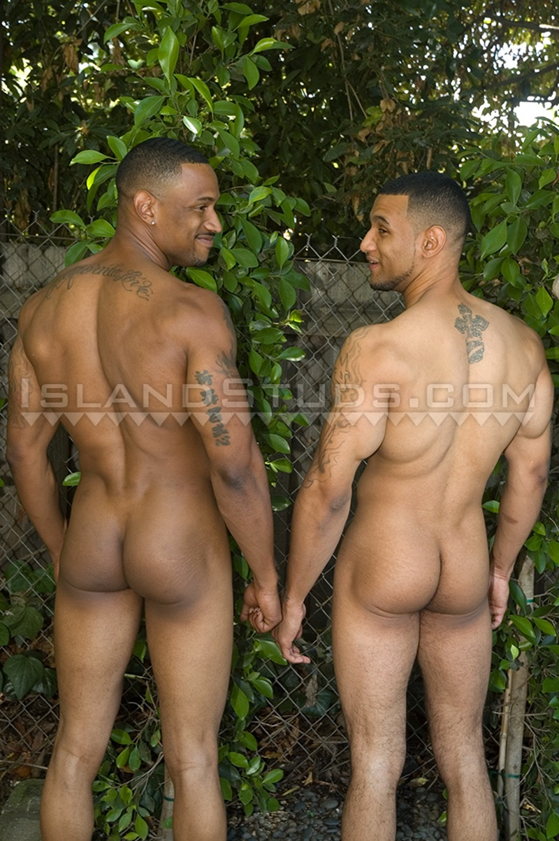 Young black brothers nude together