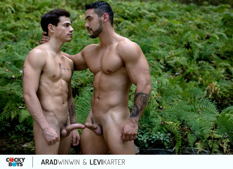 cockyboys-sexy-nude-big-muscle-dude-arad-winwin-huge-dick-fucks-levi-karter-smooth-bubble-butt-asshole-cocksucker-anal-rimming-017-gay-porn-sex-gallery-pics-video-photo