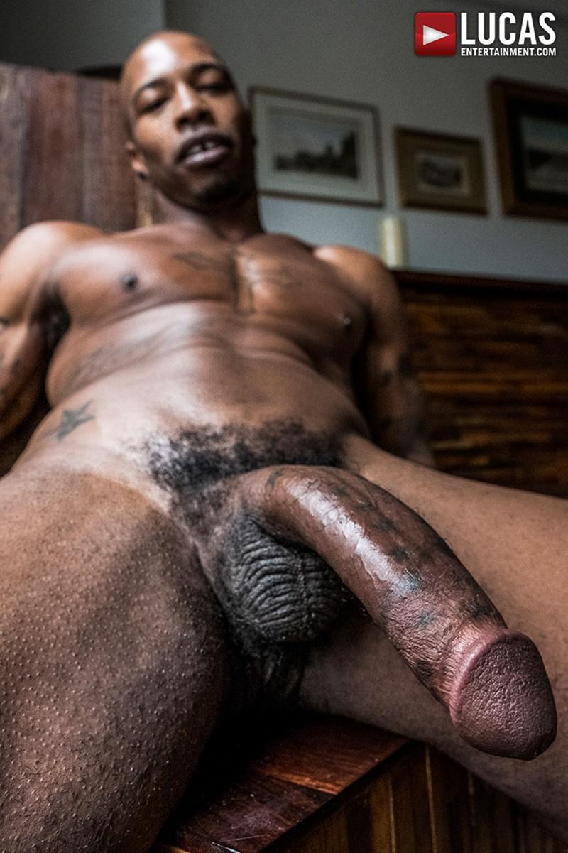 Hairy black cock