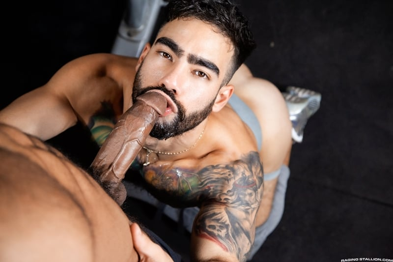 Hardcore ass fucking trio with hottie young studs Johnny Hill, Adonis Cole and Elliot Finn